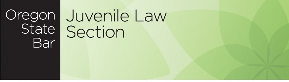 Juvenile Law Section